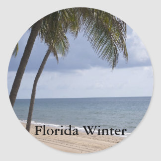 Palm tree on beach Florida Winter Classic Round Sticker