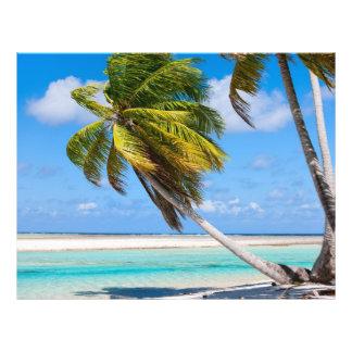 Palm tree on the ocean beach flyer