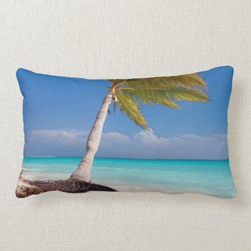 Palm Beach Style Pillows : Palm tree on the ocean beach throw pillows Zazzle