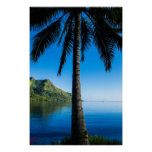 Palm Tree Over Cooks Bay Print