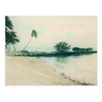 Palm Tree Peninsula at Smathers Beach, Key West FL Postcard