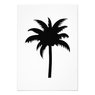 Palm Tree Personalized Announcement
