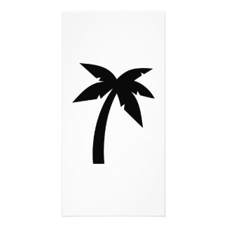 Palm tree photo card