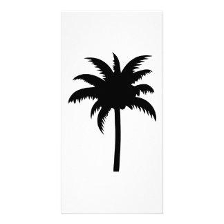 Palm Tree Photo Cards