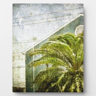 Palm Tree :) Photo Plaques