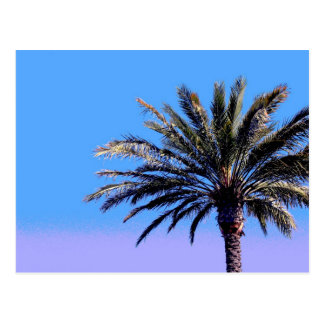 palm tree postcard