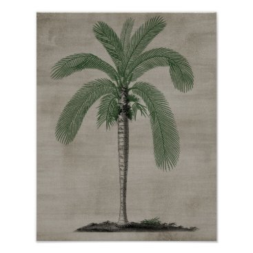 Beach Themed Palm Tree Poster