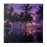 "Palm Tree Reflection Ceramic Tile<br><div class=""desc"">This photo features a row of palm trees reflections on a tropical beach at Sunrise.</div>"