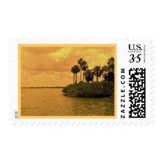 Palm Tree Reverie Postage