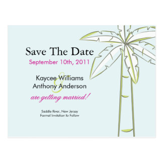 Palm Tree Save The Date POST CARD!