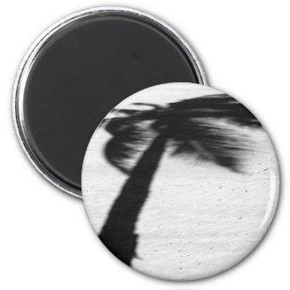 palm tree shadow on beach magnet