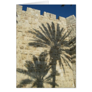 Palm Tree Shadows Greeting Cards