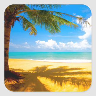 Palm Tree Shadows Square Sticker