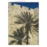 Palm Tree Shadows Stationery Note Card