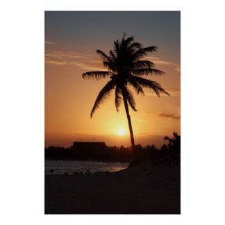 Palm tree silhouette against the sunset poster