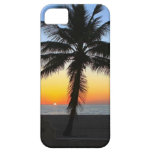 Palm Tree Silhouette Ocean Sunset iPhone 5 Case