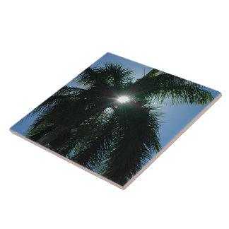 Palm Tree silhouette sun tropical Tile
