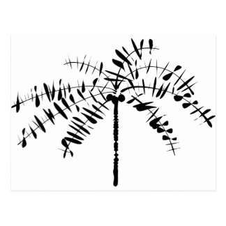 Palm Tree Sketch Post Card