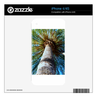 Palm Tree Skins For The iPhone 4