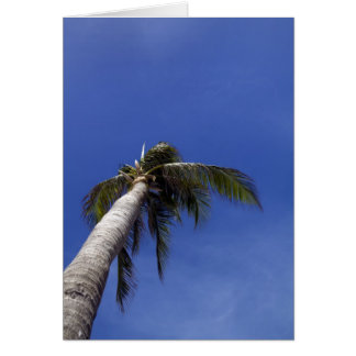 Palm Tree Stationery Note Card