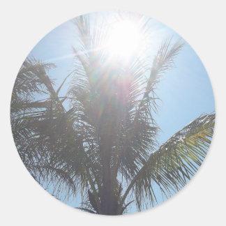 Palm Tree Summer Day Sticker