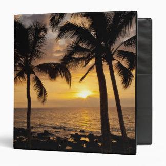 Palm tree sunset 3 ring binder