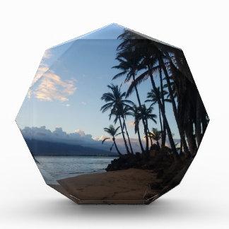 Palm Tree Sunset Acrylic Award