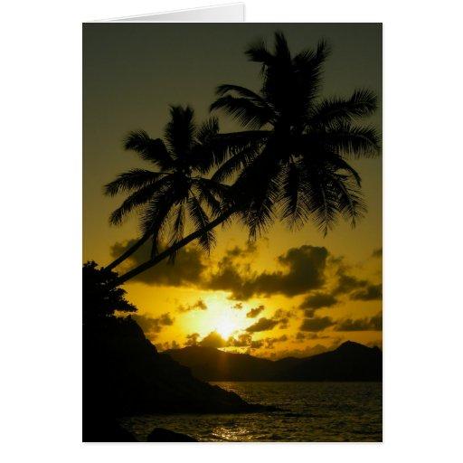 Palm tree sunset card