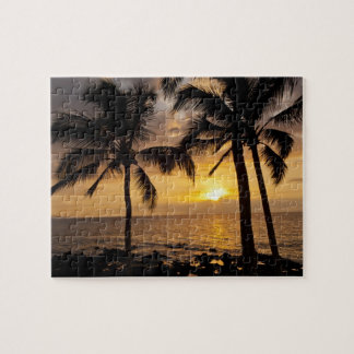 Palm tree sunset jigsaw puzzle
