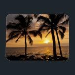 "Palm tree sunset magnet<br><div class=""desc"">Cathy &amp; Gordon Illg \\COPYRIGHT Cathy &amp; Gordon Illg / Jaynes Gallery / DanitaDelimont.com | USA,  Hawaii,  Maui,  Kihei. Palm tree sunset. Credit as: Cathy &amp; Gordon Illg / Jaynes Gallery / DanitaDelimont.com | AssetID: US12 BJY0009</div>"