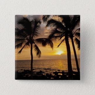 Palm tree sunset pinback button