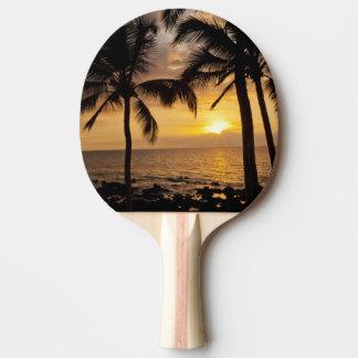 Palm tree sunset Ping-Pong paddle
