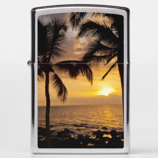 Palm tree sunset zippo lighter