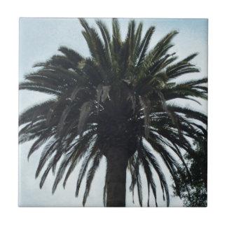 Palm Tree Tile