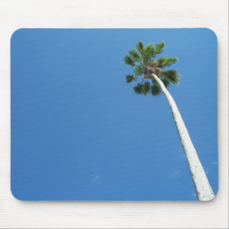 Palm Tree Tropical blue sky mousepad photograph