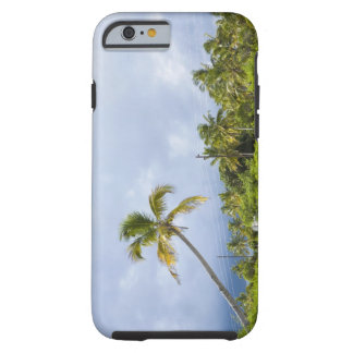 Palm trees along road, Ponta Morrungulo, Tough iPhone 6 Case