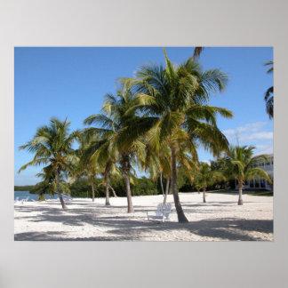Palm Trees and Beach Print