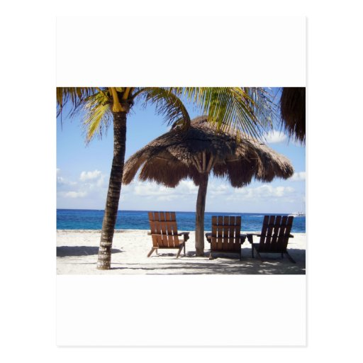 Palm Trees and chairs Mexico Beach Post Card