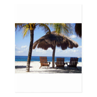 Palm Trees and chairs Mexico Beach Postcard