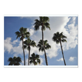palm trees and clear skies card
