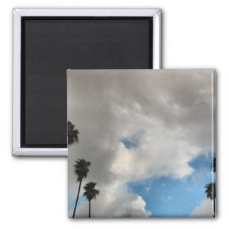 palm trees and clouds magnet