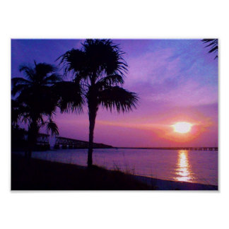 Palm Trees and Ocean Waves Posters