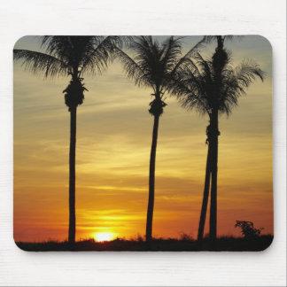 Palm trees and sunset, Mindil Beach, Darwin Mouse Pad