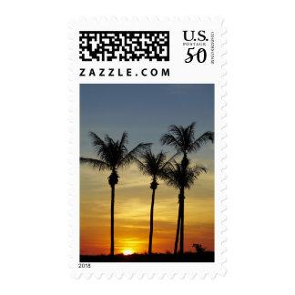 Palm trees and sunset, Mindil Beach, Darwin Postage