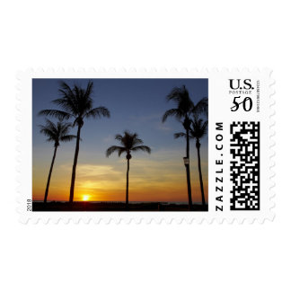 Palm trees and sunset, Mindil Beach Postage