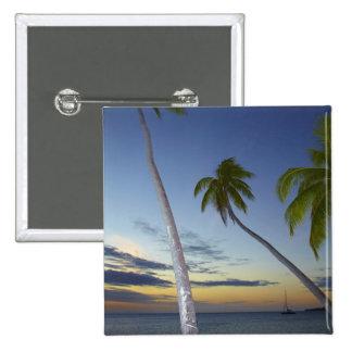 Palm trees and sunset, Plantation Island Resort Button