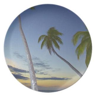 Palm trees and sunset, Plantation Island Resort Melamine Plate