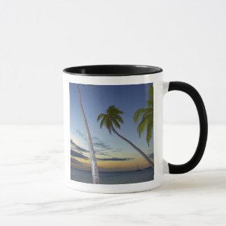 Palm trees and sunset, Plantation Island Resort Mug