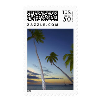 Palm trees and sunset, Plantation Island Resort Postage