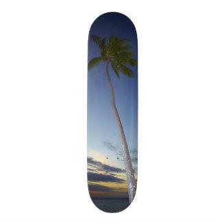 Palm trees and sunset, Plantation Island Resort Skateboard Deck